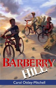 Barberry Hill front cover