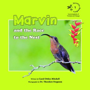 Marvin and the Race to the Nest